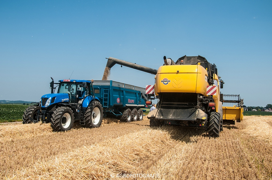 New Holland CX 8070 (graan, 02-07-2015) (12)