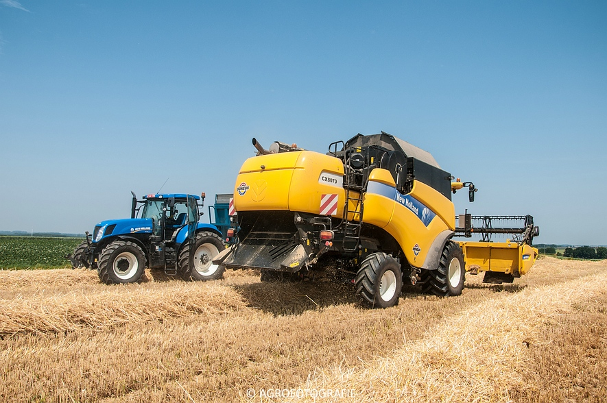 New Holland CX 8070 (graan, 02-07-2015) (8)