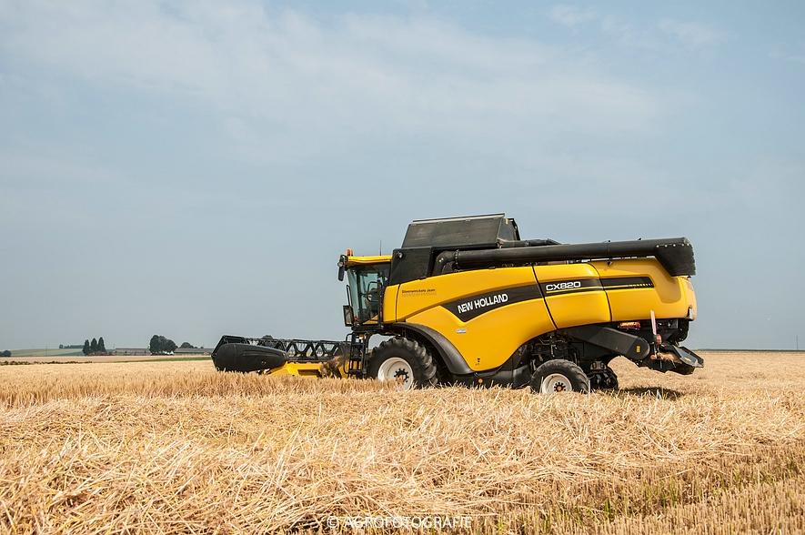 New Holland CX 820 (graan, Steenwinckels, 02-07-2015) (21)