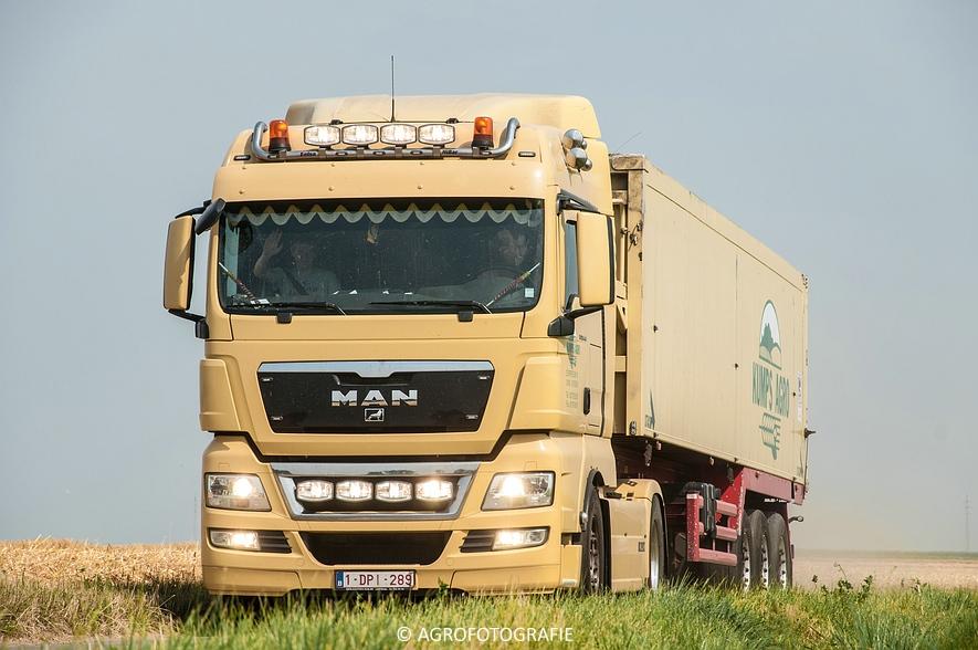 New Holland CX 820 (graan, Steenwinckels, 02-07-2015) (38)
