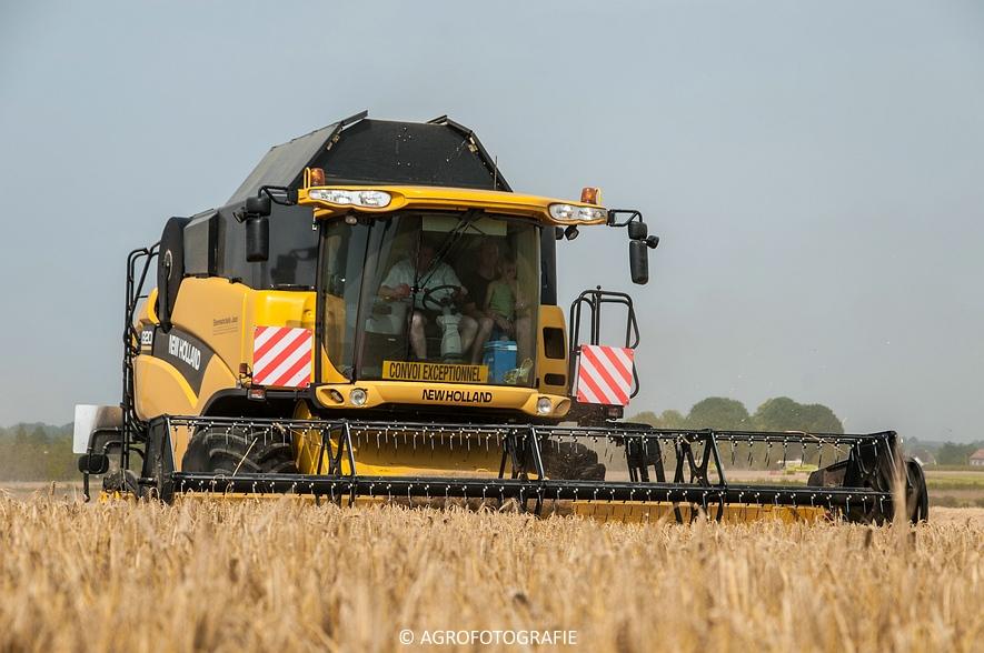New Holland CX 820 (graan, Steenwinckels, 02-07-2015) (46)
