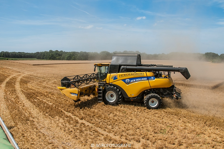 New Holland CR 8.80 + Fendt (Graan, 01-08-2015, Hoedemakers) (15 van 134)