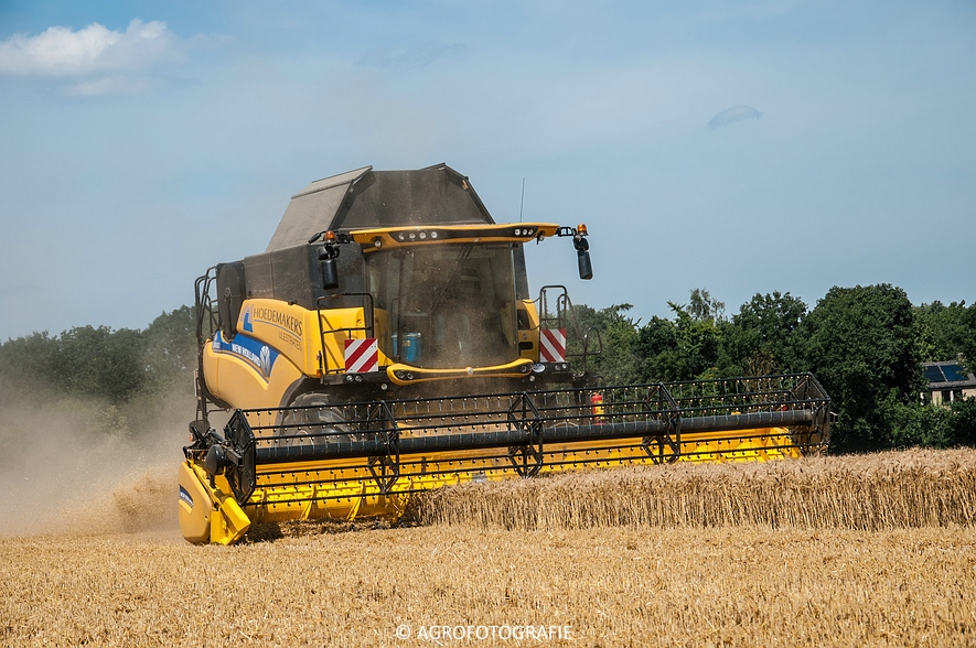 New Holland CR 8.80 + Fendt (Graan, 01-08-2015, Hoedemakers) (43 van 134)