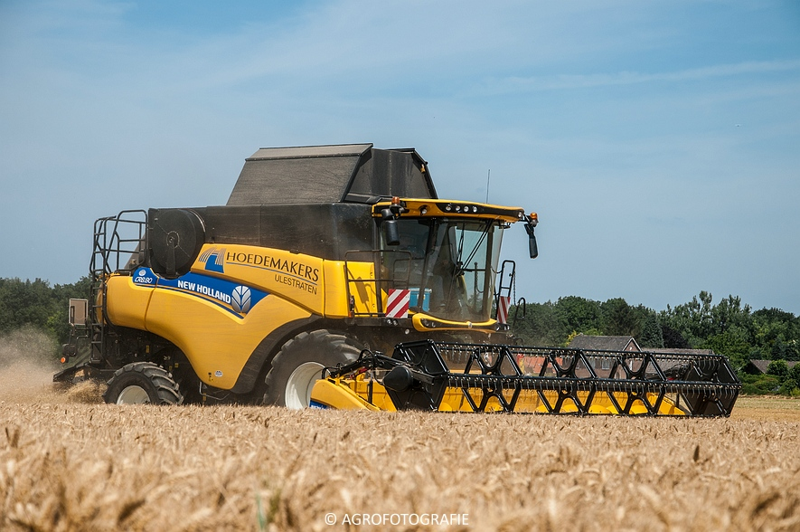 New Holland CR 8.80 + Fendt (Graan, 01-08-2015, Hoedemakers) (72 van 134)