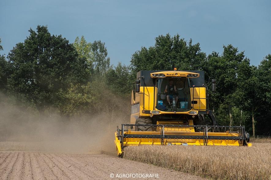 New Holland CSX 7050 (Graan, 12-08-2015, Maas BV) (17 van 31)