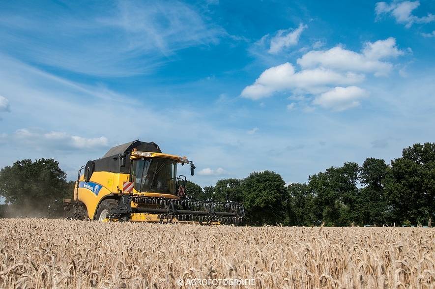 New Holland CX 8050 & New Holland Clayson 8070 (Graan, 31-07-2015) (104 van 165)