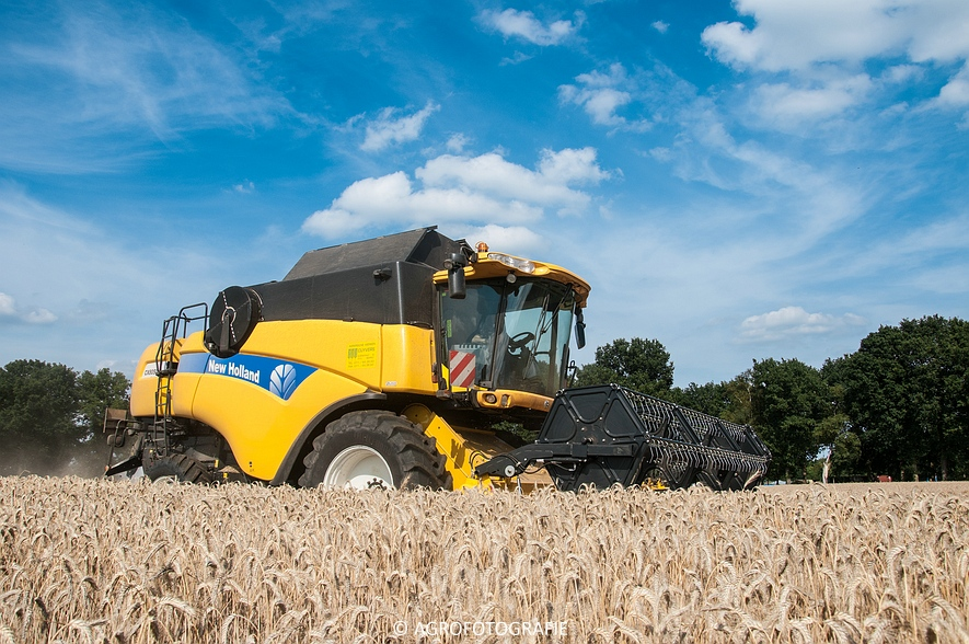 New Holland CX 8050 & New Holland Clayson 8070 (Graan, 31-07-2015) (109 van 165)