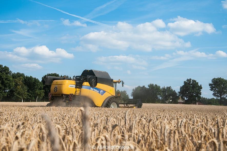 New Holland CX 8050 & New Holland Clayson 8070 (Graan, 31-07-2015) (133 van 165)