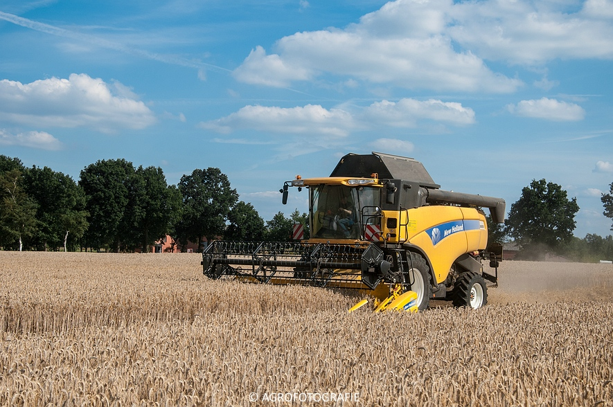 New Holland CX 8050 & New Holland Clayson 8070 (Graan, 31-07-2015) (145 van 165)