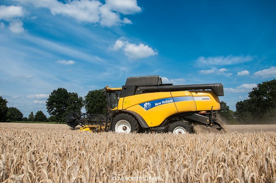 New Holland CX 8050 & New Holland Clayson 8070 (Graan, 31-07-2015) (155 van 165)