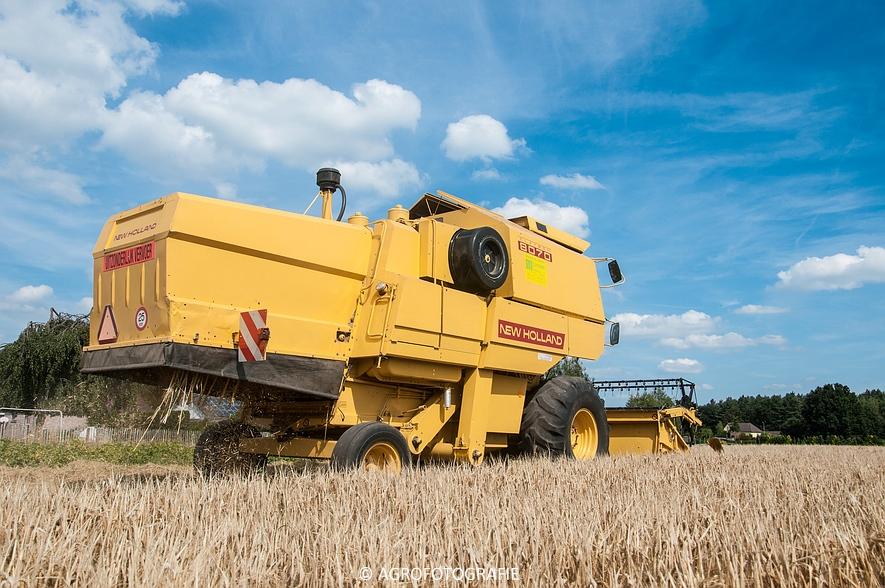 New Holland CX 8050 & New Holland Clayson 8070 (Graan, 31-07-2015) (29 van 165)