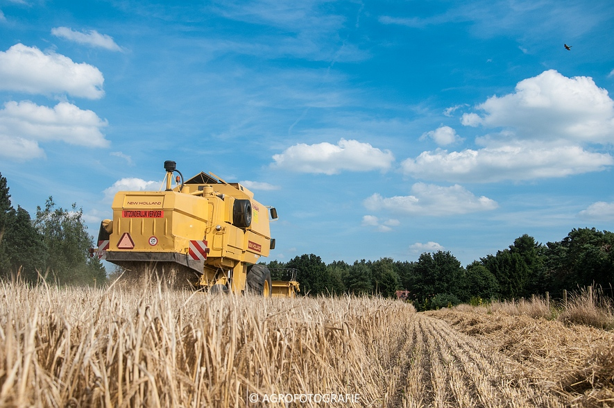 New Holland CX 8050 & New Holland Clayson 8070 (Graan, 31-07-2015) (34 van 165)