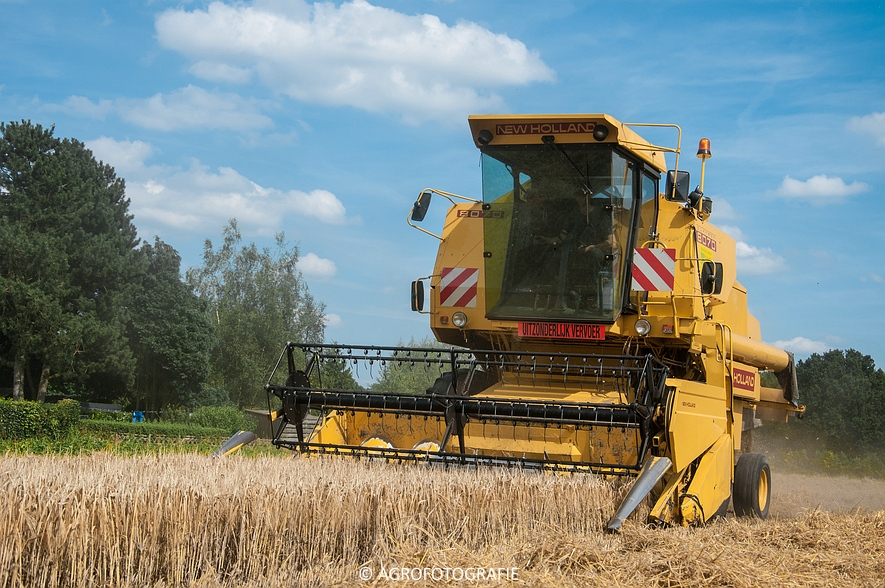 New Holland CX 8050 & New Holland Clayson 8070 (Graan, 31-07-2015) (45 van 165)