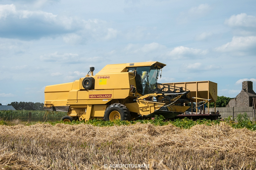 New Holland CX 8050 & New Holland Clayson 8070 (Graan, 31-07-2015) (53 van 165)