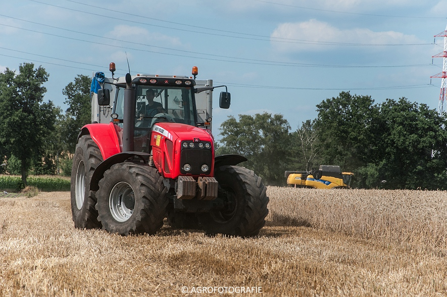 New Holland CX 8050 & New Holland Clayson 8070 (Graan, 31-07-2015) (61 van 165)