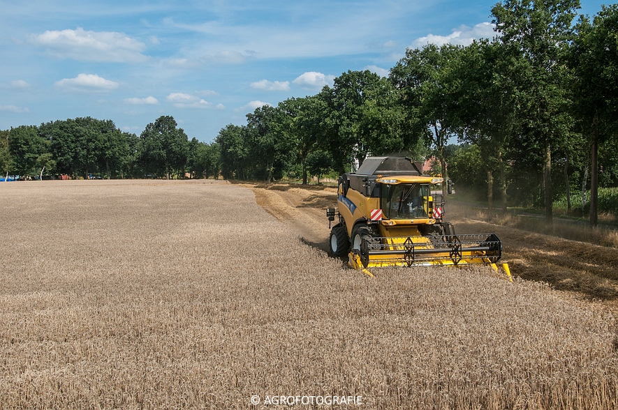 New Holland CX 8050 & New Holland Clayson 8070 (Graan, 31-07-2015) (80 van 165)