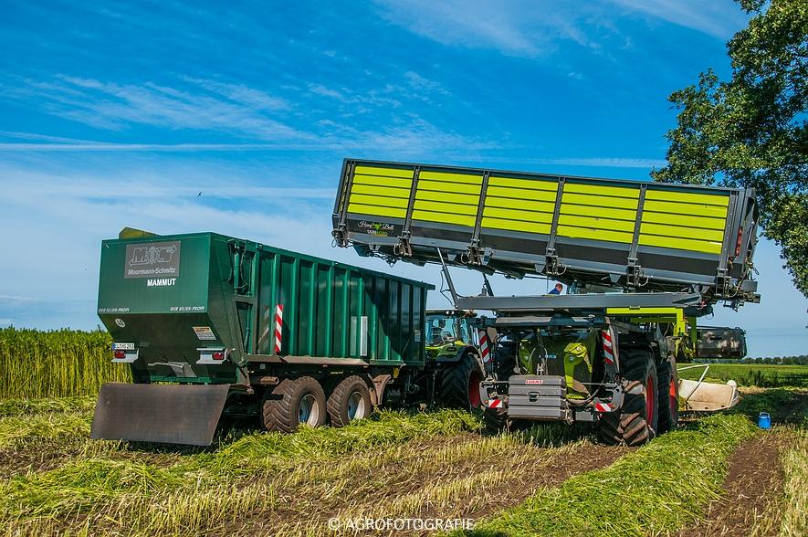 Claas Xerion 4000 Hemp Bull (Dun Agro, 10-09-2015) (23 van 58)