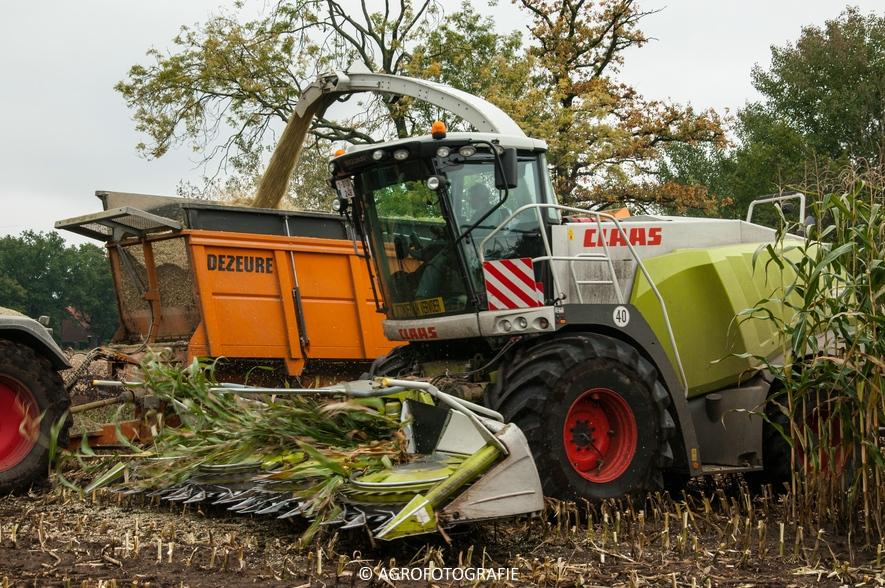 Claas Jaguar 960 + Fendt (Janssens, 16-10-2015) (34 van 50)