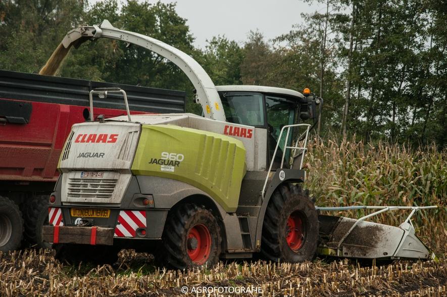 Claas Jaguar 960 + Fendt (Janssens, 16-10-2015) (49 van 50)