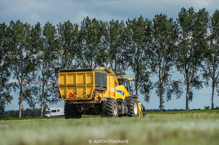 New Holland FR 9050 bunkerhakselaar (Grashakselen, grasdrogerij Ruinerwold, 09-09-2015) (15 van 54)