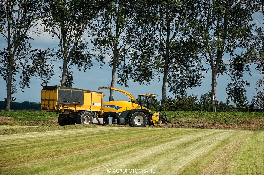 New Holland FR 9050 bunkerhakselaar (Grashakselen, grasdrogerij Ruinerwold, 09-09-2015) (17 van 54)