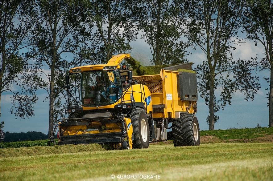 New Holland FR 9050 bunkerhakselaar (Grashakselen, grasdrogerij Ruinerwold, 09-09-2015) (19 van 54)