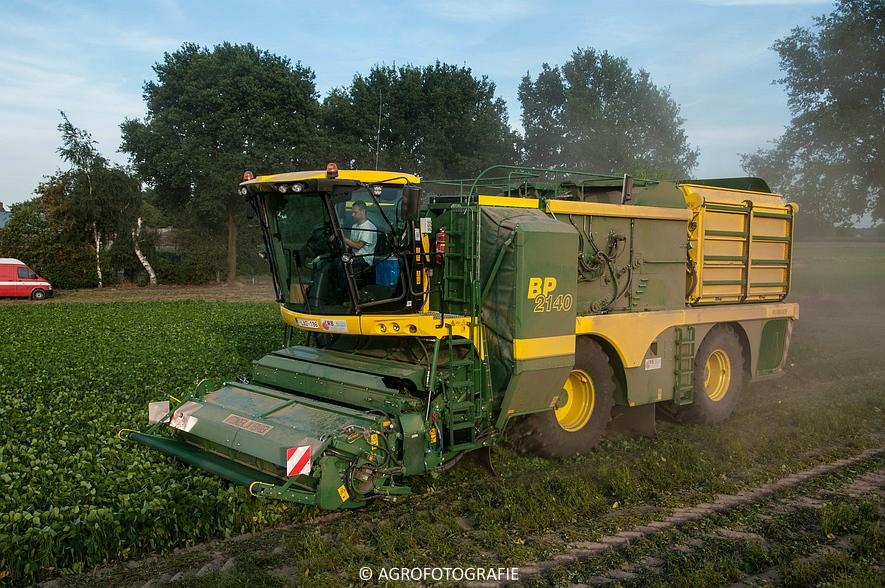 Ploeger BP 2140 (Bonenplukken, 03-08-2015) (29 van 77)