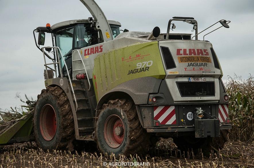 Claas JAGUAR 970 (Maïs, TCW, 25-10-2015) (18 van 104)