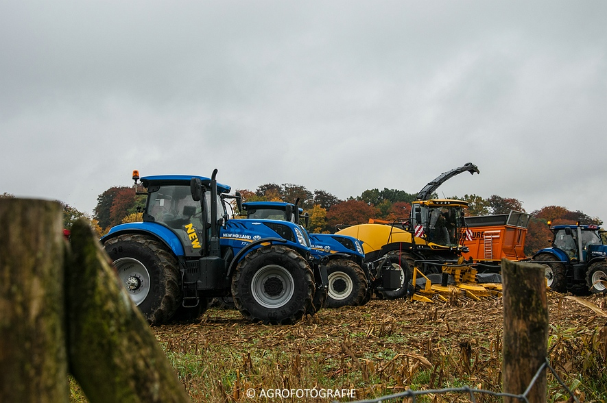 Demo New Holland FR 650 & CR8.80 (Loverjoel, 25-10-2015) (1)