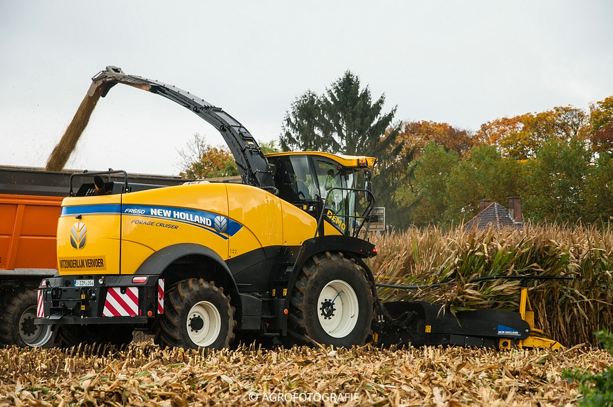 Demo New Holland FR 650 & CR8.80 (Loverjoel, 25-10-2015) (114)