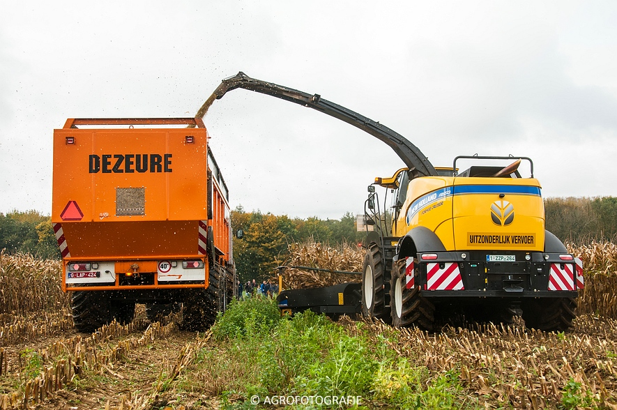 Demo New Holland FR 650 & CR8.80 (Loverjoel, 25-10-2015) (63)