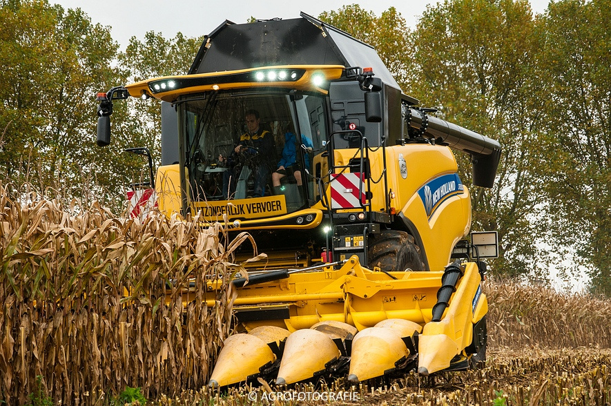 Demo New Holland FR 650 & CR8.80 (Loverjoel, 25-10-2015) (68)
