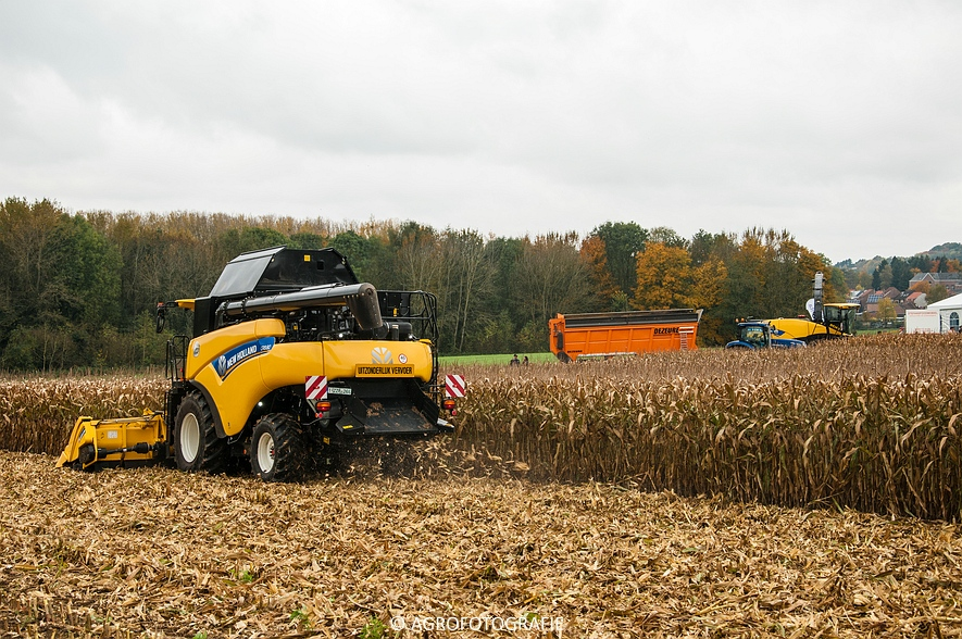 Demo New Holland FR 650 & CR8.80 (Loverjoel, 25-10-2015) (81)