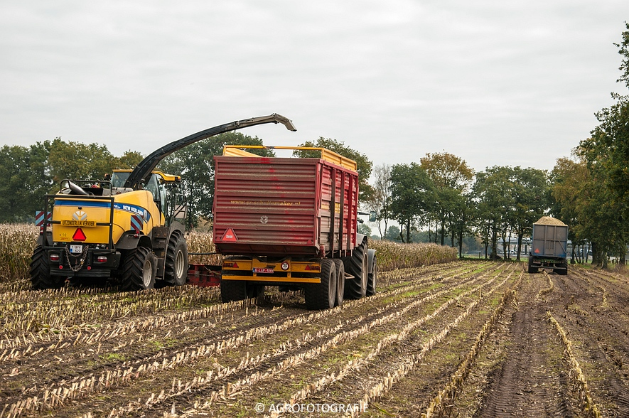 New Holland FR 700 (Demo, Geutjens, 23-10-2015) (24 van 28)