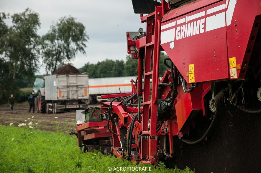 Grimme Varitron 270 (Wortelen, Van Eijck, 25-08-2015) (26 van 56)