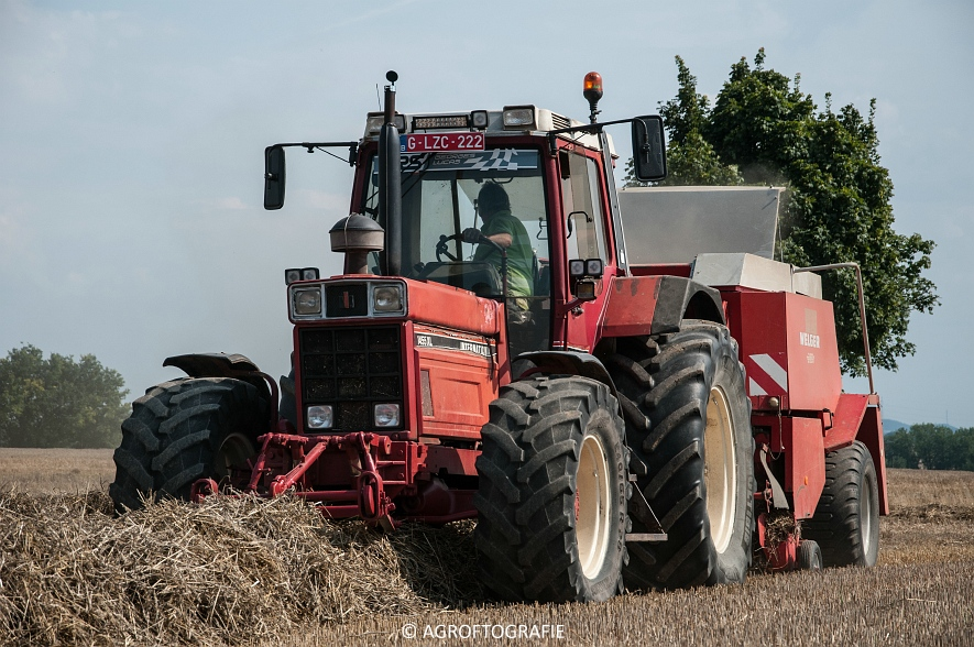 International 1455XL + Welger D6000 (19 van 58)