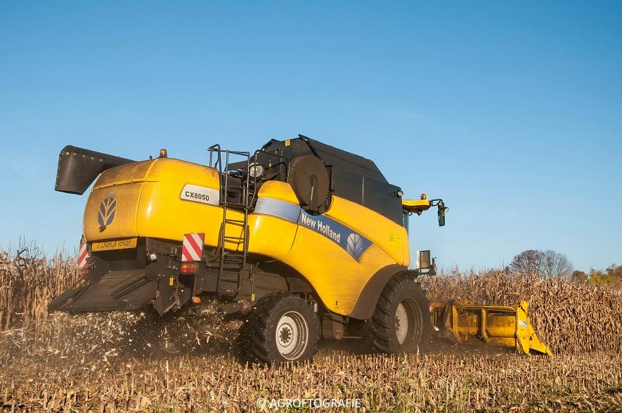 New Holland CX 8050 (Maïs, 01-11-2015) (12 van 45)