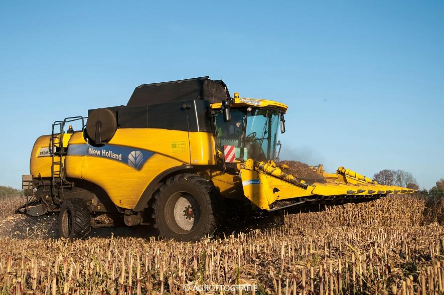 New Holland CX 8050 (Maïs, 01-11-2015) (22 van 45)