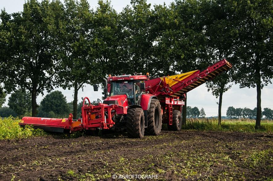 Case IH 175 CVX & Steyr + Grimme SE 150-60 (Aardappelen rooien, Sandee, 10-09-2015) (1 van 60)