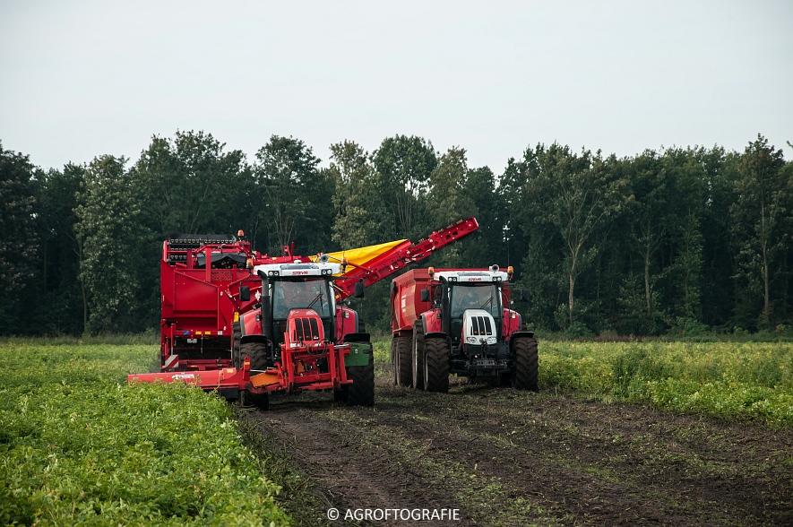 Case IH 175 CVX & Steyr + Grimme SE 150-60 (Aardappelen rooien, Sandee, 10-09-2015) (17 van 60)