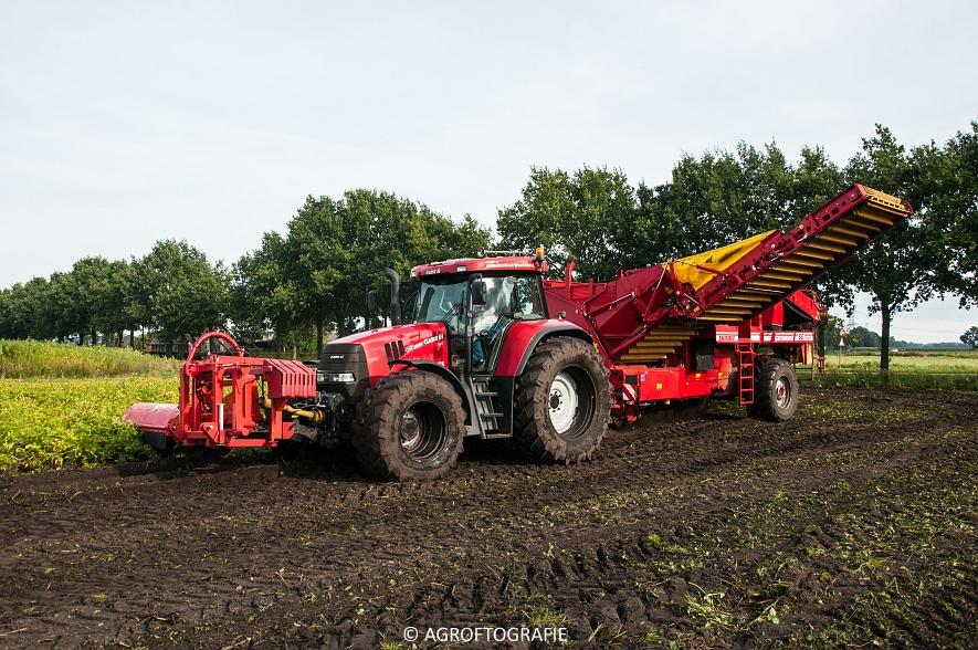 Case IH 175 CVX & Steyr + Grimme SE 150-60 (Aardappelen rooien, Sandee, 10-09-2015) (3 van 60)