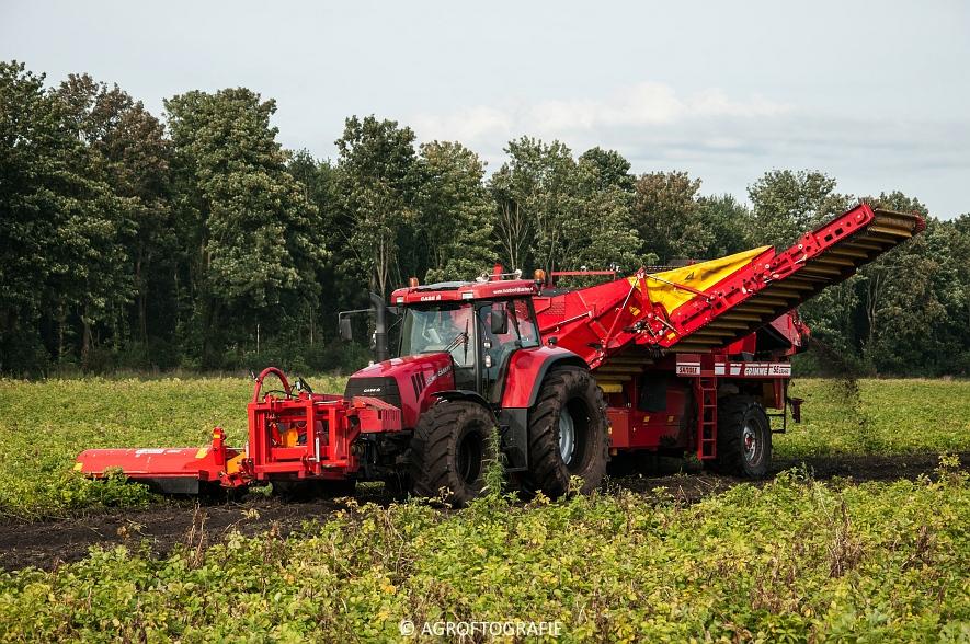Case IH 175 CVX & Steyr + Grimme SE 150-60 (Aardappelen rooien, Sandee, 10-09-2015) (31 van 60)