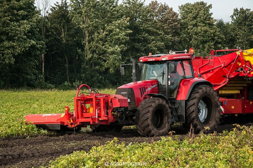 Case IH 175 CVX & Steyr + Grimme SE 150-60 (Aardappelen rooien, Sandee, 10-09-2015) (32 van 60)