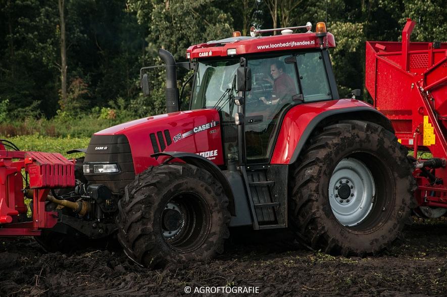 Case IH 175 CVX & Steyr + Grimme SE 150-60 (Aardappelen rooien, Sandee, 10-09-2015) (37 van 60)