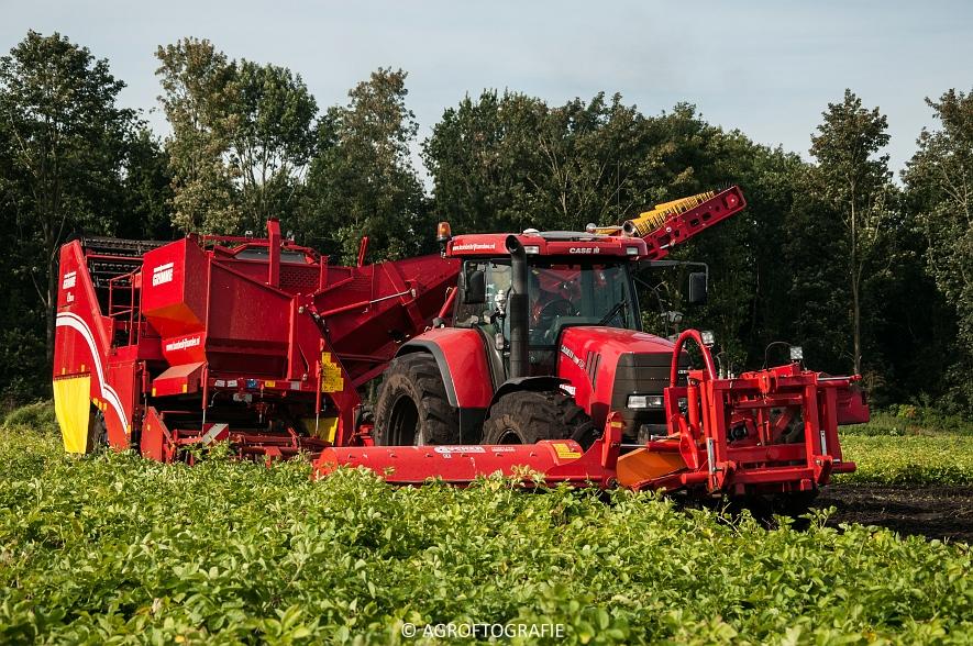Case IH 175 CVX & Steyr + Grimme SE 150-60 (Aardappelen rooien, Sandee, 10-09-2015) (43 van 60)