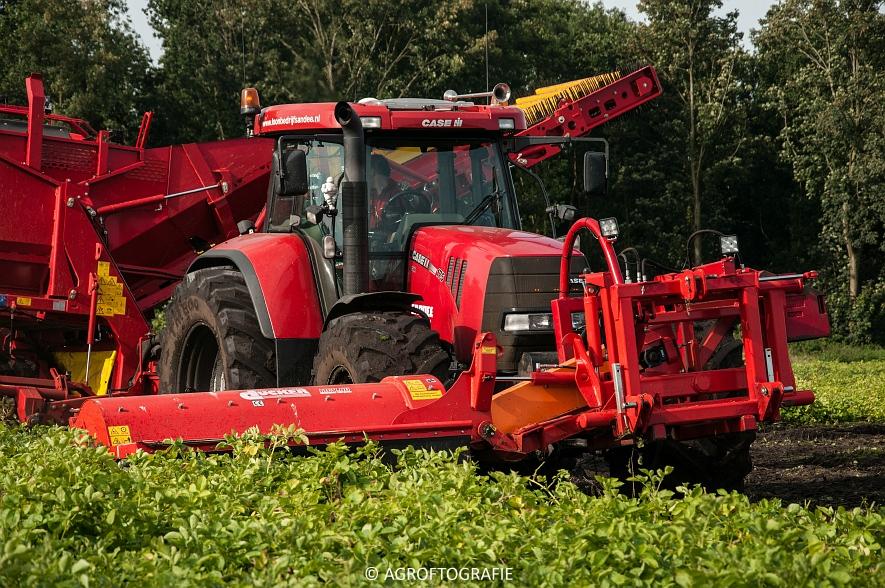 Case IH 175 CVX & Steyr + Grimme SE 150-60 (Aardappelen rooien, Sandee, 10-09-2015) (44 van 60)