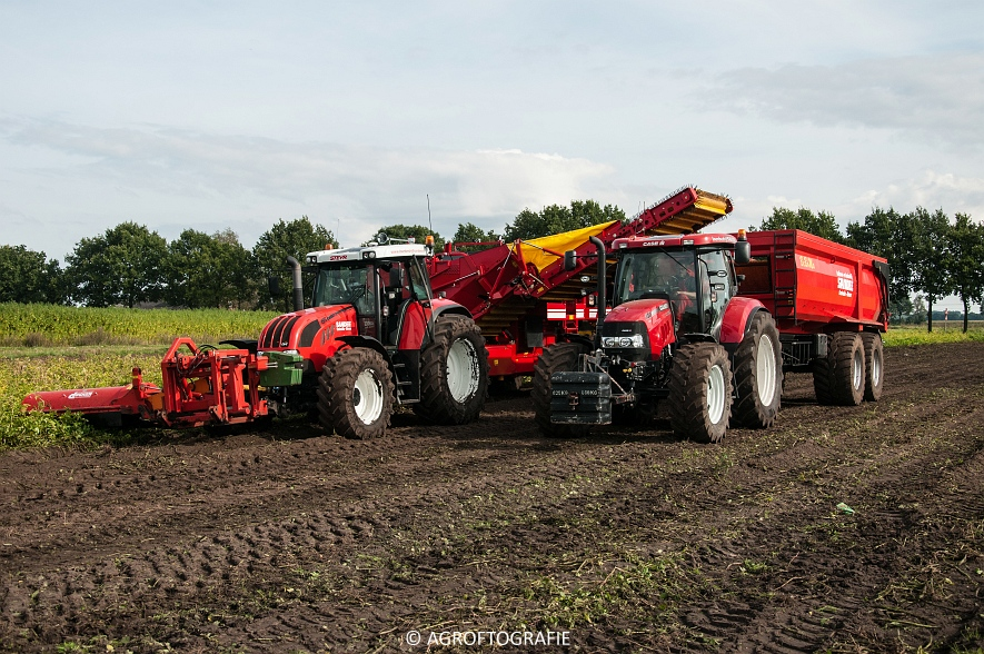 Case IH 175 CVX & Steyr + Grimme SE 150-60 (Aardappelen rooien, Sandee, 10-09-2015) (54 van 60)