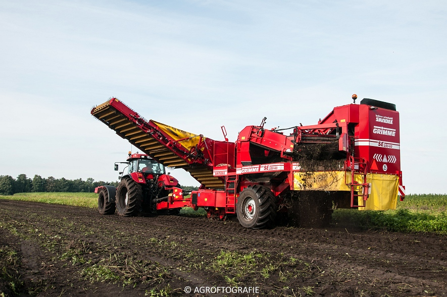 Case IH 175 CVX & Steyr + Grimme SE 150-60 (Aardappelen rooien, Sandee, 10-09-2015) (8 van 60)