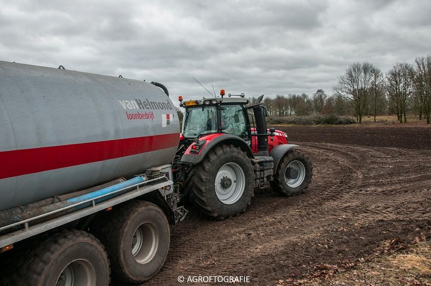 Massey Ferguson 7495 & 8690 Van Helmond Agrofotografie (14)