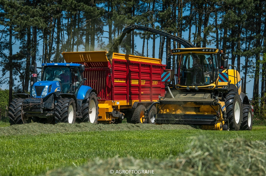 New Holland FR 850 Forage Cruiser (Geutjens, gras, 08-05-2016) (23 van 74)jpg